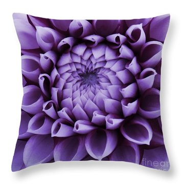 Throw Pillow featuring the photograph Dahlia Macro In Lavender by Patricia Strand