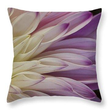 Dahlia Petals 2 Throw Pillow