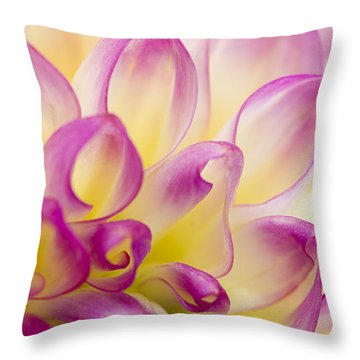 Dahlia Petals 5 Throw Pillow