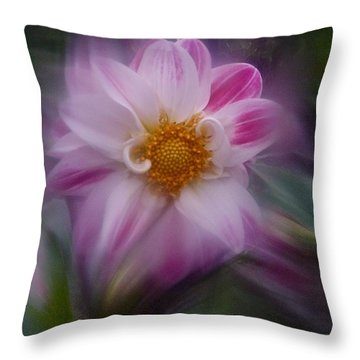 Throw Pillow featuring the photograph Dahlia Aug 2016 No. 2 by Richard Cummings