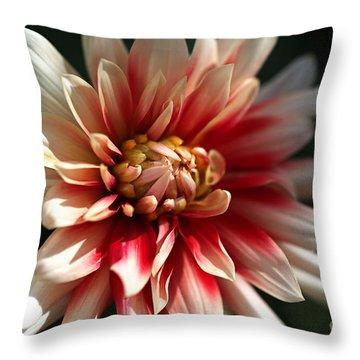 Dahlia Warmth Throw Pillow