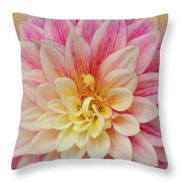 Throw Pillow featuring the photograph Dahlia With Golden Background by Mary Jo Allen