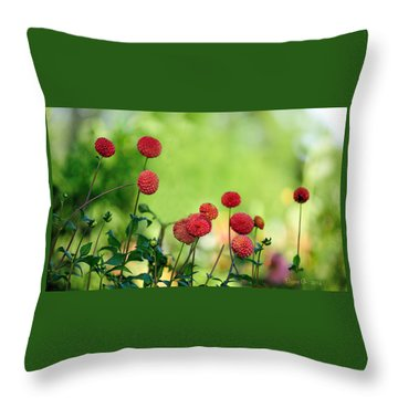 Dahlias Throw Pillow by Diane Giurco