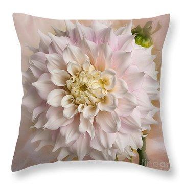 Dahllia 'gitts Perfection' Throw Pillow