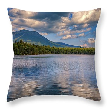 Daicey Pond Throw Pillow