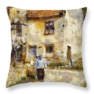 Daily Walk Throw Pillow by Shirley Stalter