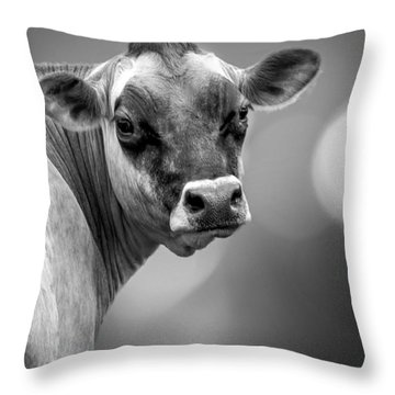 Dairy Cow Elsie Throw Pillow by Bob Orsillo