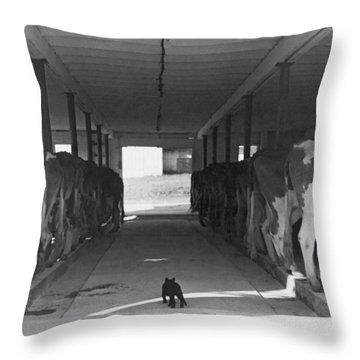 Dairy Farming Barn Scene Throw Pillow