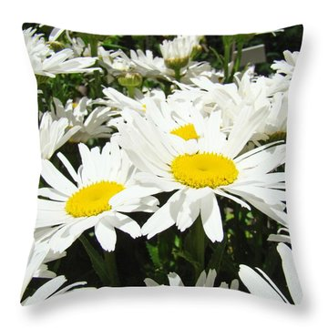Daisies Floral Landscape Art Prints Daisy Flowers Baslee Troutman Throw Pillow by Baslee Troutman