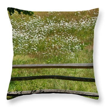 Daisies On The Vineyard Throw Pillow