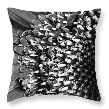 Daisy Art Throw Pillow