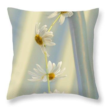 Daisy Chain Throw Pillow by Elaine Teague
