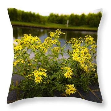 Daisy Daisy Throw Pillow by Svetlana Sewell