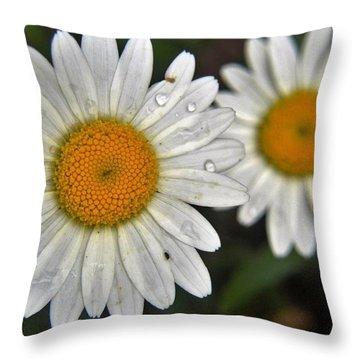 Daisy Dew Throw Pillow