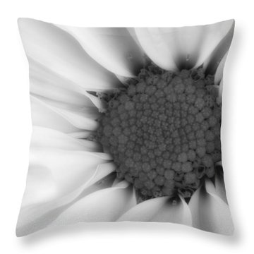 Daisy Flower Macro Throw Pillow