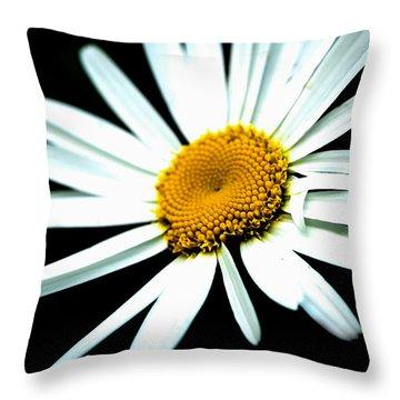 Throw Pillow featuring the photograph Daisy Flower - White Sun by Alexander Senin