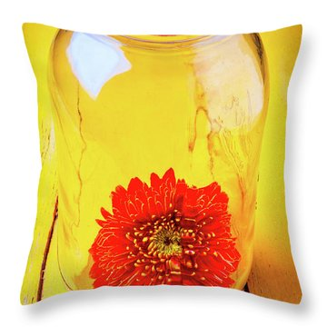 Daisy In Glass Jar Throw Pillow by Garry Gay