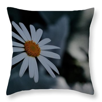 Daisy In Gloom Throw Pillow by Tim Good