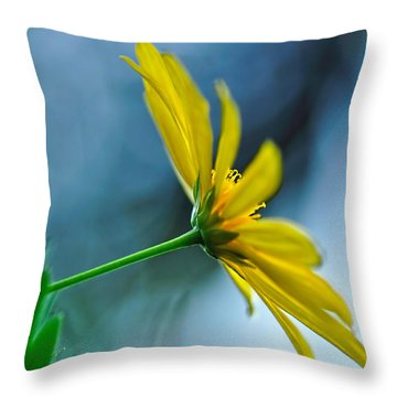 Daisy In The Breeze Throw Pillow by Kaye Menner