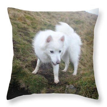Daisy - Japanees Spits Throw Pillow by David Grant