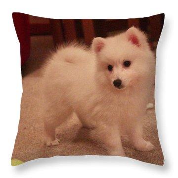Daisy - Japanese Spitz Throw Pillow by David Grant