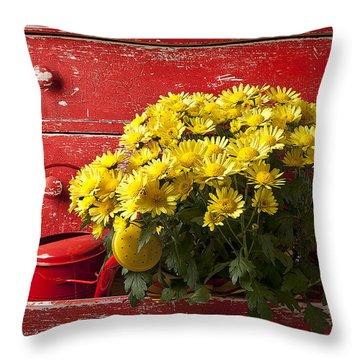 Red Knob Throw Pillows