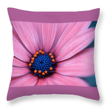 Daisy Throw Pillow by Rachel Mirror