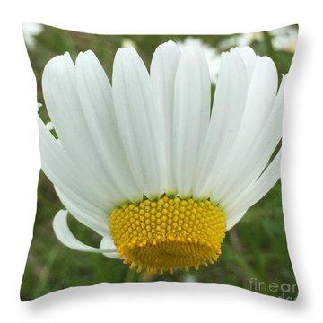 Daisy Reverse Throw Pillow