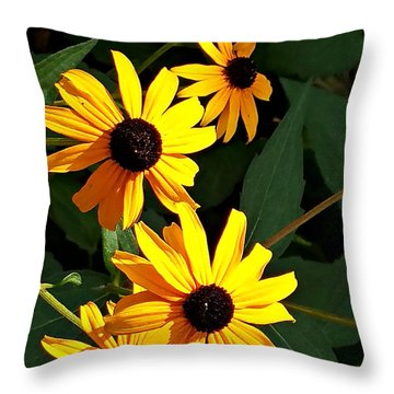 Daisy Row Throw Pillow
