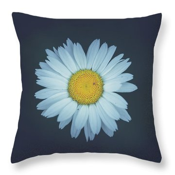 Throw Pillow featuring the photograph Daisy  by Shane Holsclaw