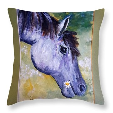 Daisy The Old Mare     52 Throw Pillow