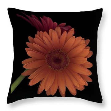 Daisy Tilt Throw Pillow by Heather Kirk