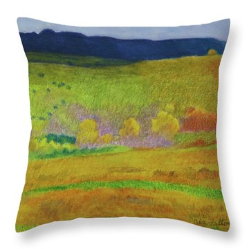 Dakota Dream Throw Pillow