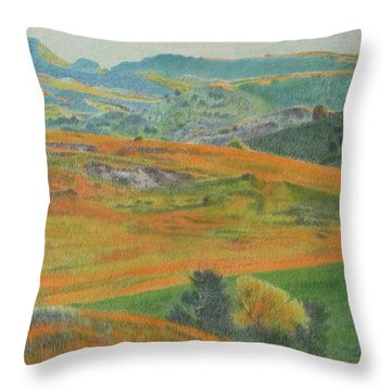 Dakota Prairie Dream Throw Pillow