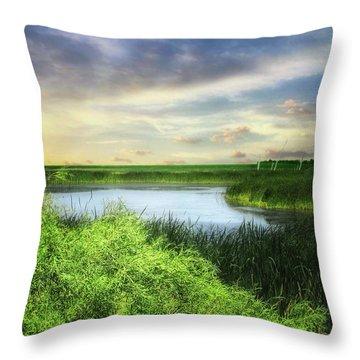 Dakota Wetlands 7 Throw Pillow