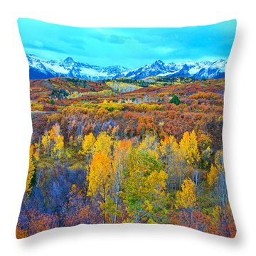 Dallas Divide Palette  Throw Pillow
