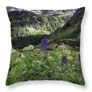 Dallas Peak Throw Pillow