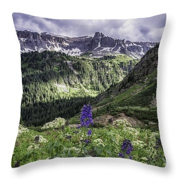 Throw Pillow featuring the photograph Dallas Peak by Bitter Buffalo Photography