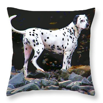 Throw Pillow featuring the photograph Dalmatian On The Rocks by Wendy McKennon