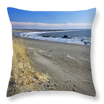 Damon Point Throw Pillow