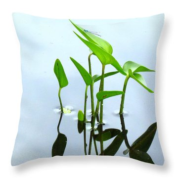 Damselfly In The Mirror Throw Pillow