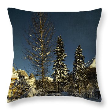 Dan Creek Cabin Feb. 2014 Throw Pillow