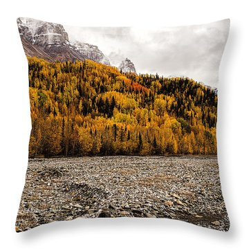 Dan Creek Color Throw Pillow