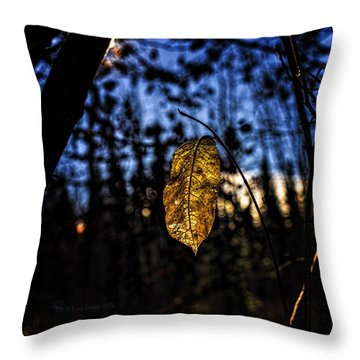 Dan Creek Gold Throw Pillow