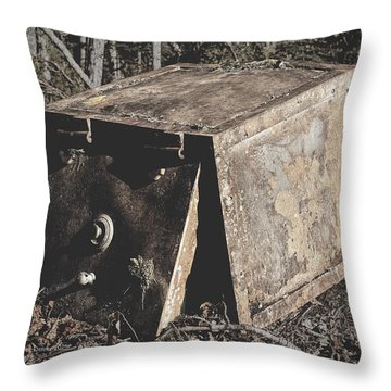 Dan Creek Safe Throw Pillow