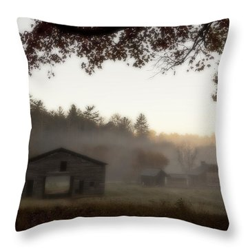 Dan Lawson Place Throw Pillow