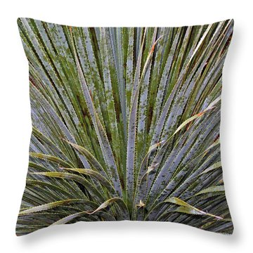 Dana Point Swords Throw Pillow