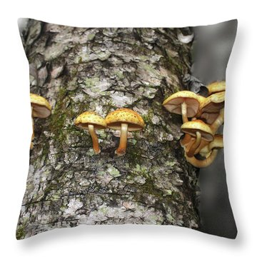 Throw Pillow featuring the photograph Dance Around The Ancient Birch by Wayne King