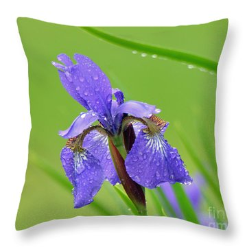 Throw Pillow featuring the photograph Dance In The Rain by Lila Fisher-Wenzel