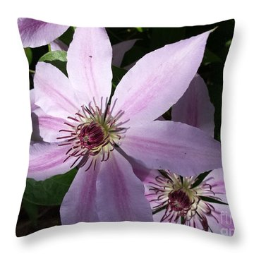 Dance Of The Clematis Throw Pillow